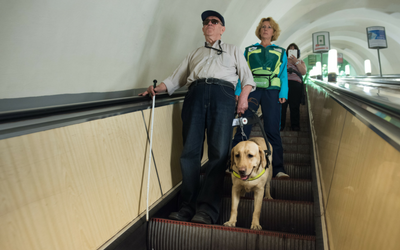 image for Assistance Dog Week